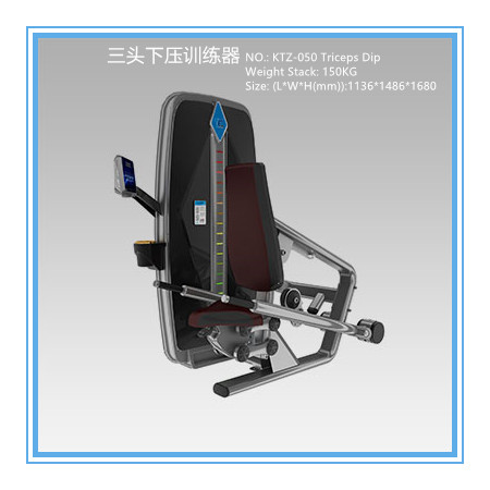 Professional Commercial Exercise Equipment For Biceps And Triceps 1051*1541*1680mm