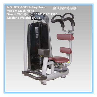 China Pin Loaded Aerobic Exercise Equipment Torso Rotation Machine For Bodybuilding supplier
