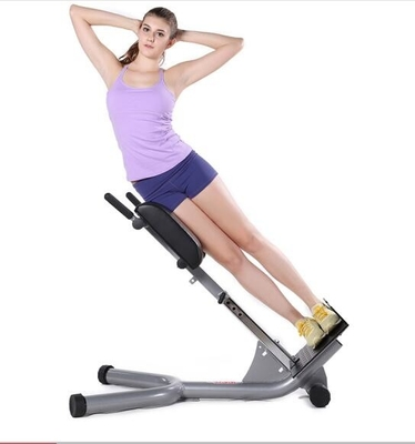 China Portable Power Exercise Equipment High Density Sponge Lower Back Extension Bench  distributor